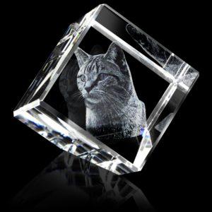 Glasgravures in kristalglas